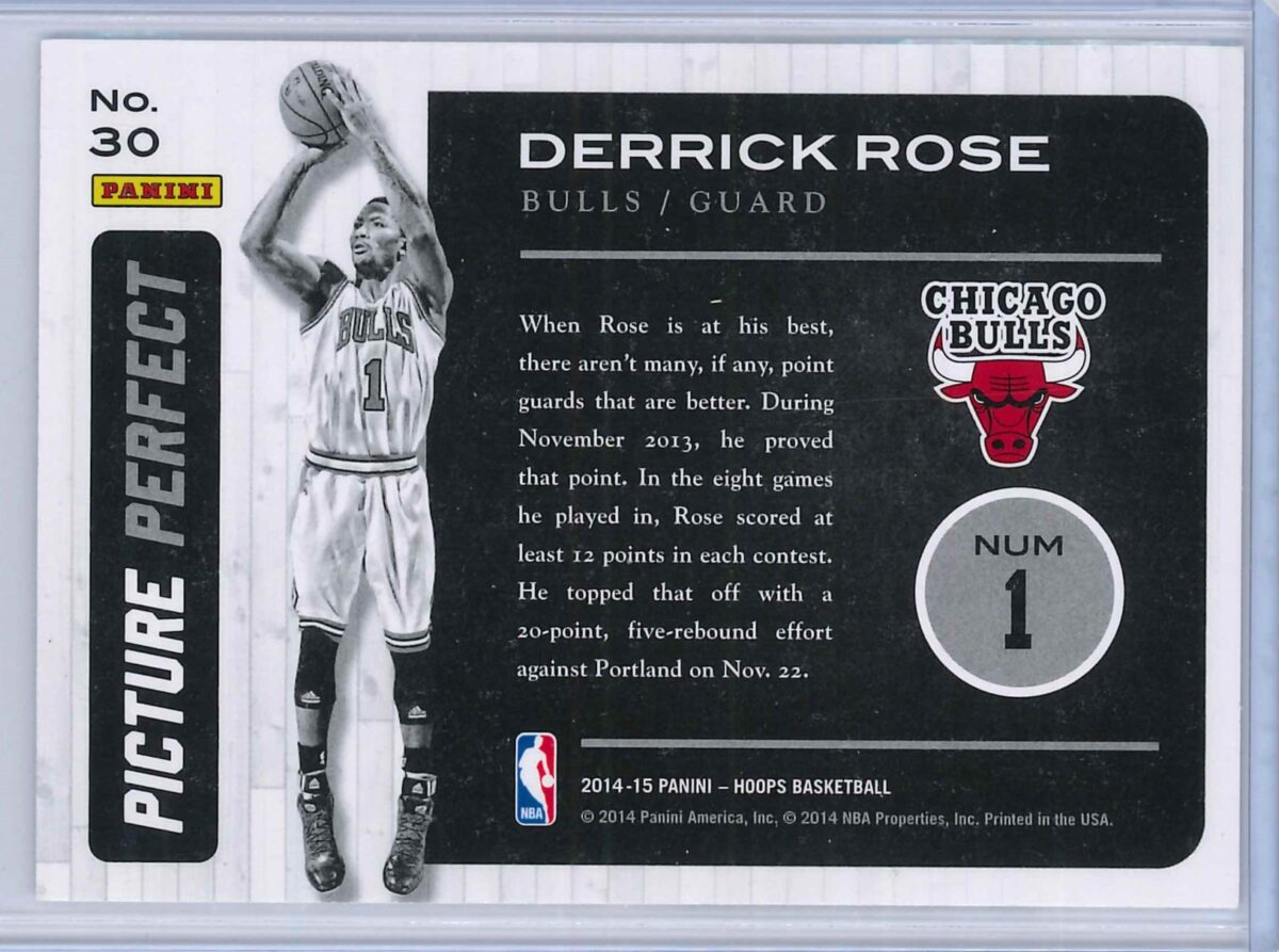 Derrick Rose Panini Hoops Basketball 2014 15 Picture Perfect 2