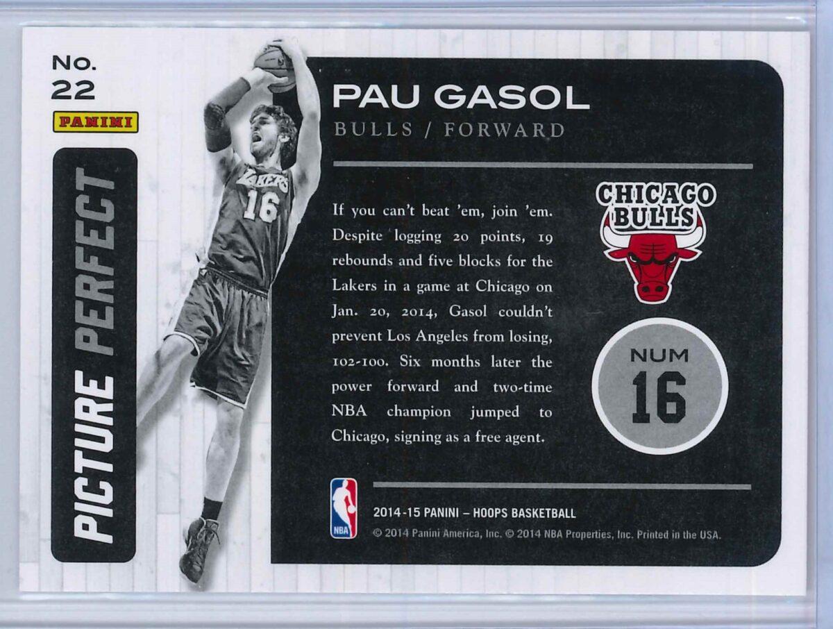 Pau Gasol Panini Hoops Basketball 2014 15 Picture Perfect 2